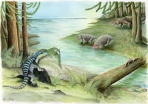 """The midnight sun over Early Triassic Antarctica."" Along the banks of a river, three archosaur inhabitants of the dense Voltzia conifer forest cross paths: Antarctanax shackletoni sneaks up on an early titanopetran insect, Prolacerta lazes on a log, and an enigmatic large archosaur pursues two unsuspecting dicynodonts, Lystrosaurus maccaigi. CREDIT (c) Adrienne Stroup, Field Museum"
