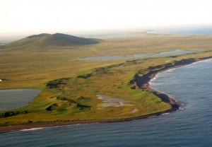 St. Paul Island in the Bering Sea. Photo by Ned Rozell.