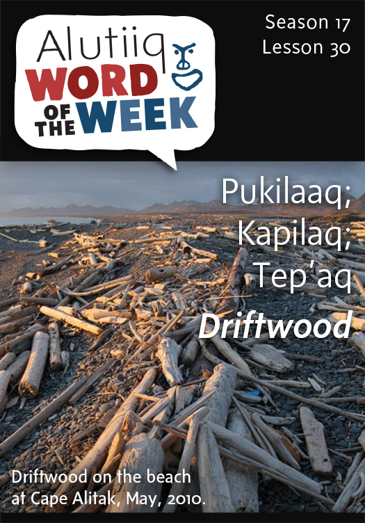 Driftwood-Alutiiq Word of the Week-January 18, 2015