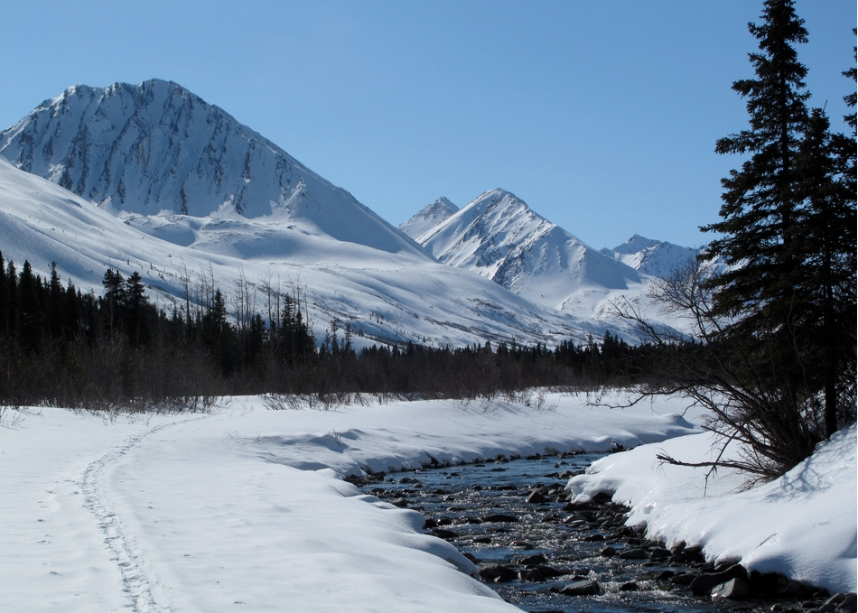 Denali has the clearest air of any monitored U.S. national park. Ned Rozell