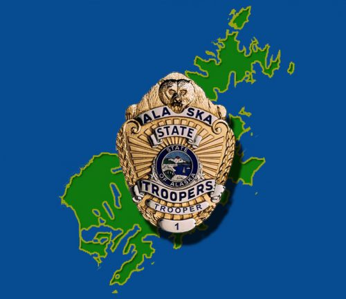Wildlife Troopers Investigate Bear Death in Port Lions