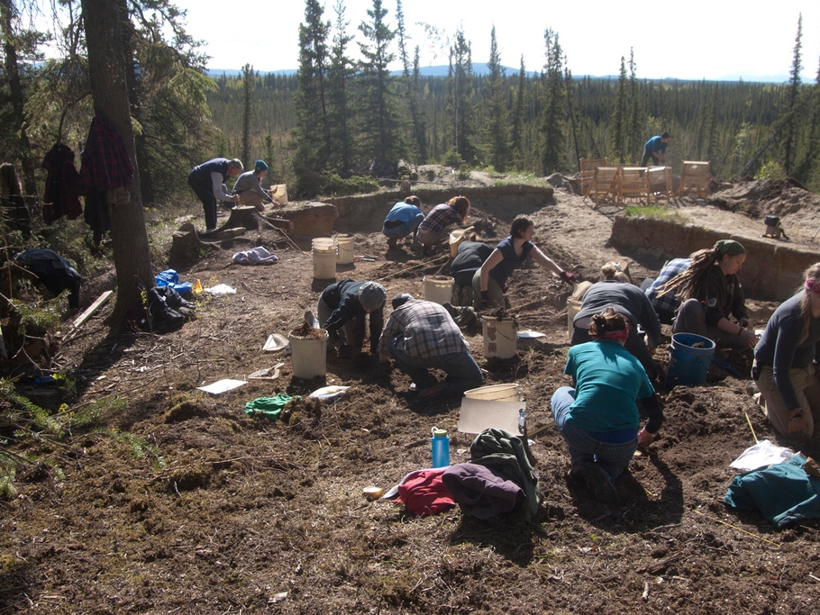 Students working at the Mead Site in Interior Alaska with archaeologist Chuck Holmes, who is at far left. Ben Potter