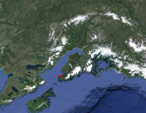 A ruptured tanker trailer aboard the cargo vessel Thor's Hammer spilled approximately 6,000 of diesel in Seldovia (red dot). Image-Google Maps
