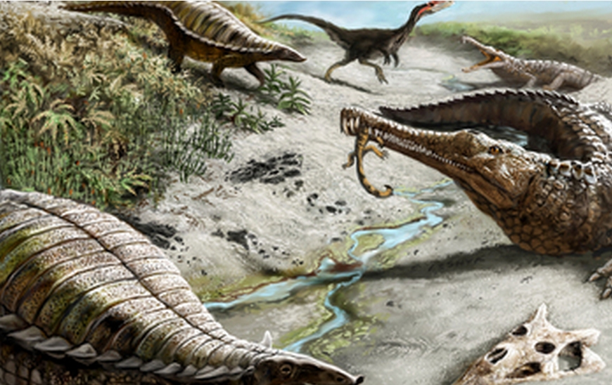 Big Dinosaurs Steered Clear of the Tropics