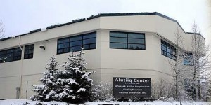 The Alutiiq Museum in Kodiak has become the first designated repository of natural and cultural history in the state of Alaska. Image-Alutiiq Museum