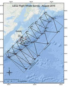 Survey map of the August 2015 North Pacific Right Whale survey.