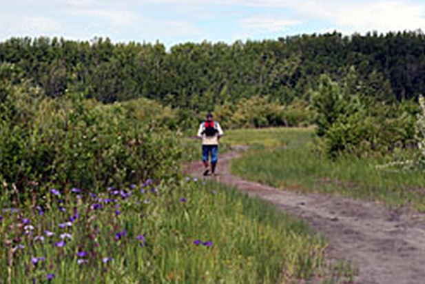The Cottonwood Creek ATV Trail in the Palmer Hay Flats Game Refuge is now closed to motorized vehicles. Image-ADF&G