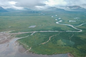 The Alec River draining into Black Lake on the Alaska Peninsula. About 300,000 sockeye salmon spawn in the Alec River and its tributaries annually, while retired Dolly Varden remain in the river year round.Morgan Bond