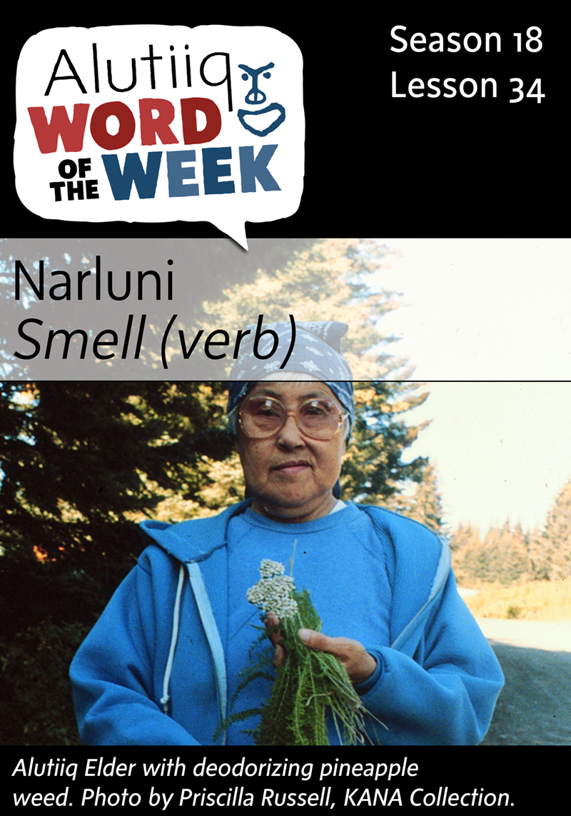 Smell-Alutiiq Word of the Week-February 14th