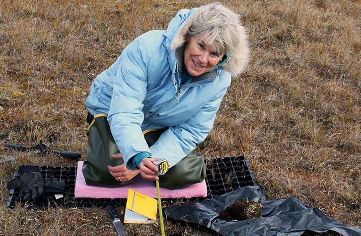 Los Alamos National Laboratory scientist Cathy Wilson measuring how soil properties change with depth at the DOE Next Generation Ecosystem Experiment, NGEE-Arctic, field site near Barrow, Alaska. Image-Los Alamos National Laboratory