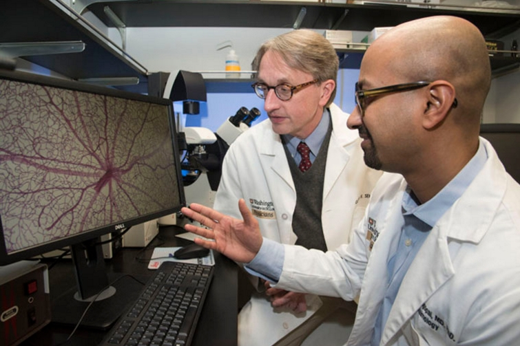 Rithwick Rajagopal, MD, PhD (foreground), and Clay F. Semenkovich, MD, view an image of a mouse retina damaged by diabetes. They found that nerve damage in the retina precedes the development of abnormal blood vessels normally blamed for vision loss in diabetic retinopathy. (Photo: Robert Boston/School of Medicine)