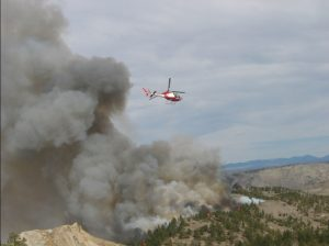 Bureau of Land Management conducting a prescribed burn. Image-BLM