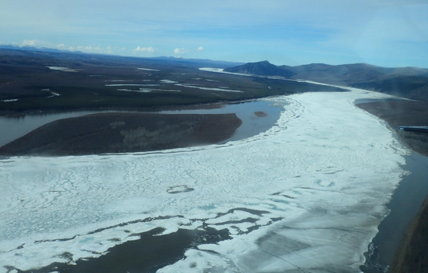 A sheet of river ice between Eagle and Circle. Photos by Ned Rozell.