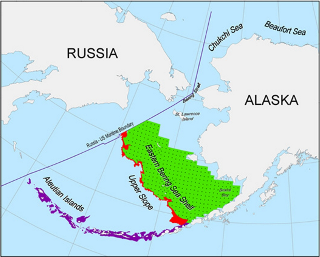 Proposed survey areas for the acoustic-trawl survey of the eastern Bering Sea shelf and Cape Navarin area of Russia, Upper Slope and Aleutian Islands