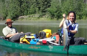 Alison Beamer displays a sheefish Jason Clark helped her land on the Zitziana River, which she paddled up on a Tanana River trip. Ned Rozell photo.