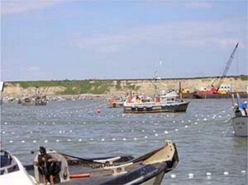 Bristol Bay Organizations Challenge Environmental Protection Agency's Removal of Bristol Bay Protections
