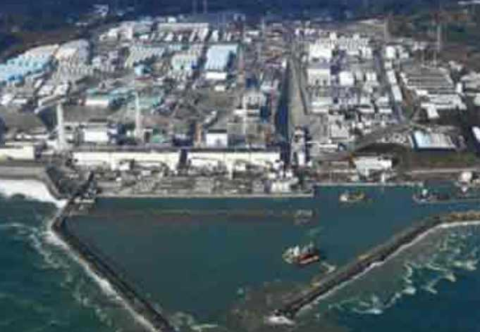 THe Fukushima Nuclear Facility suffered severe damage in 2011, releasing enormous amounts of radiation into the atmosphere and Pacific Ocean.
