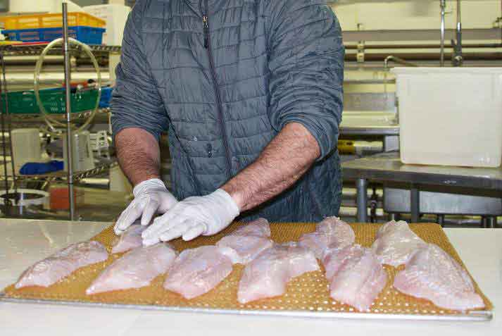 Processing fish filets. Image-UAF/SeaGrant