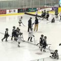 Youth Hockey players from the Mustang Hockey Association. Image-MHA