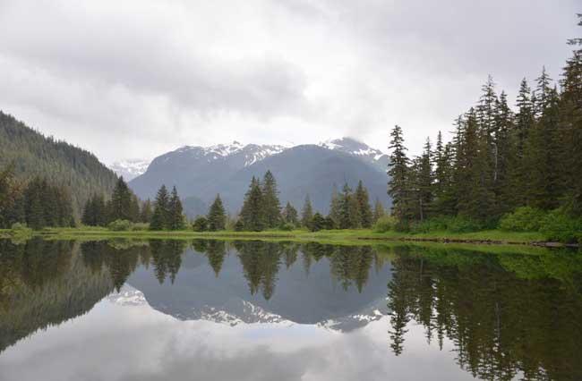 Tongass National Forest, Southeast Alaska (Photo: Brian Logan, USGS)