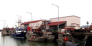 Norton Sound crabbers docked at Norton Sound Seafoods. Image-NSSP website
