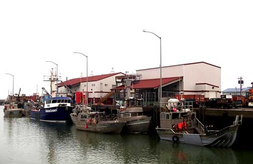 Norton Sound crabbers docked at Norton Sound Seafoods. Image-NSSP website