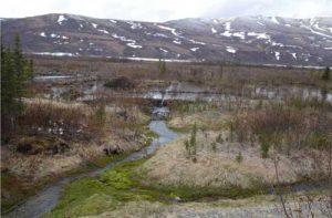 A dam on Phelan Creek near Isabel Pass. Image-Ned Rozell
