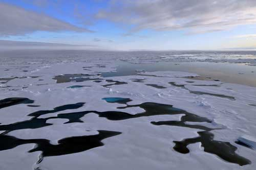 Arctic sea ice. Image-NSIDC
