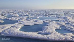 During summer months when temperatures peak, melt ponds form over the surface of Arctic ice shelves. These pools of water can reflect radiation from the sun back into the atmosphere, which can amplify the impacts of warming. (Jeremy Mathis/NOAA)