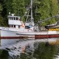 Southeast Seiner, the F/V Tlingit Lady. Image-Alaska Office of Special Prosecutions.