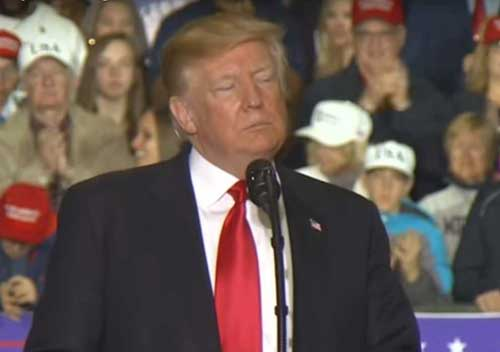 Trump at his Michigan rally. Image-Video screengrab