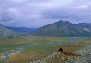 View of ANWR. Image-Steven Chase/ U.S. Fish and Wildlife Service