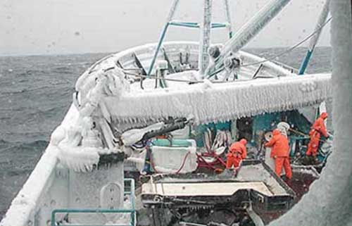 Local and Traditional Knowledge Included in Bering Sea Management Plan