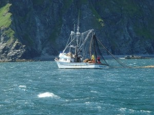 Salmon seiner fishing off of Raspberry Island on the Kodiak Archipelago. Image-Nancy Heise/Public Domain