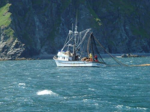 Alaska Salmon Harvest Passes 160 Million