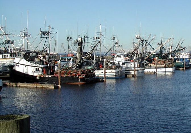 Murkowski rubio introduce bill extending discharge for Florida commercial fishing license