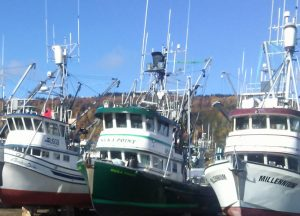 Commercial Salmon vessels laid up for the winter in the Homer Boat Yard. Image-ANN