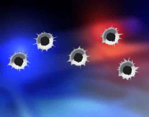 Two Fox Businesses Suffer Gunshot Damage over Weekend
