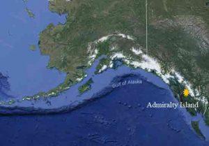 Kentucky Hunter Mauled By Brown Bear On Admiralty Island Thursday