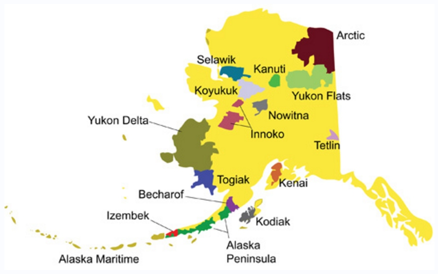 There are 16 National Wildlife refuges within the state of Alaska. Image-Ron Laubenstein/USFWS