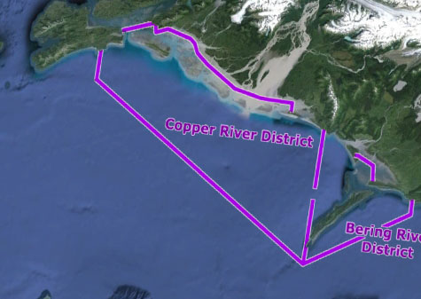 Copper River Fishery Gets Off to a Slow Start