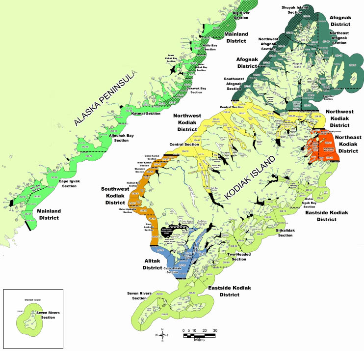 Fish and Game's Kodiak Area Salmon Statistical Chart. Image-ADF&G