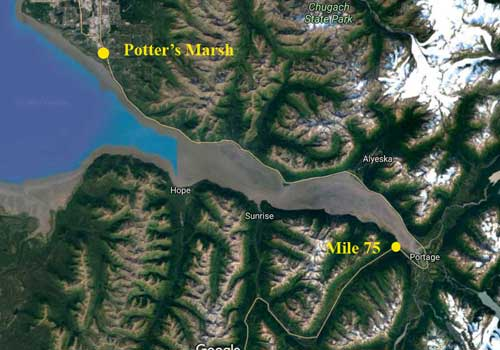 On October1, the Anchorage Police Department will begin patrolling the Seward Highway from Potter's Marsh out to mile 75. Image-Google Maps