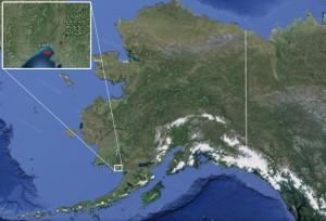 Location of Togiak. Image-Google Maps