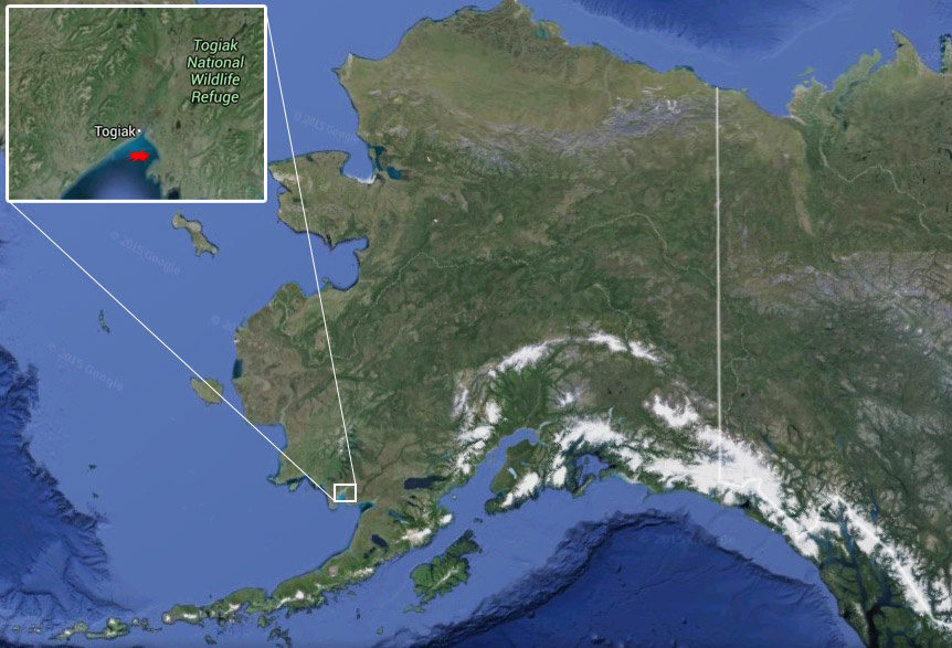 Location of Togiak. Image-Google Maps