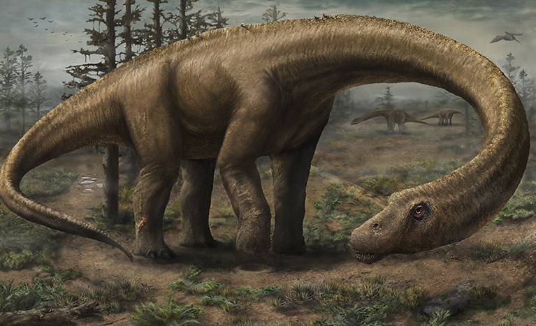 A dinosaur that feared nothing. Image-Jennifer Hall