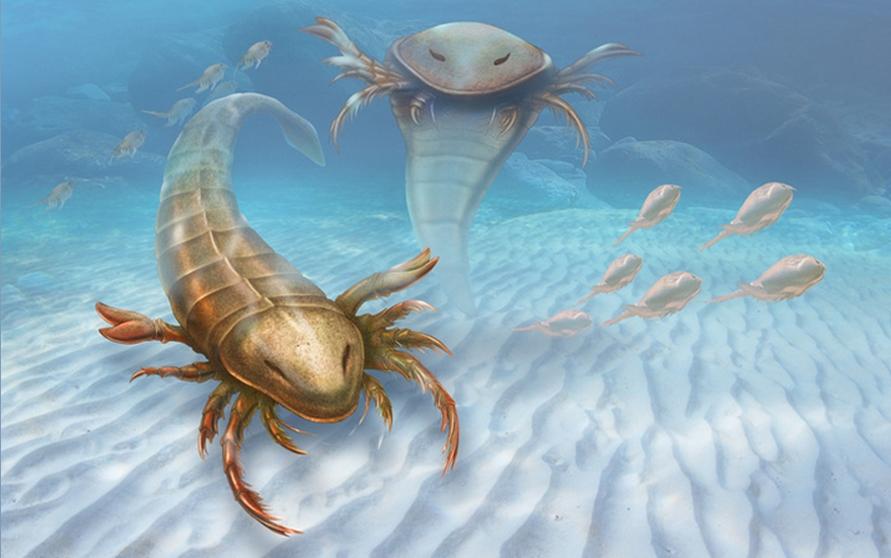 Meet Pentecopterus, a New Predator from the Prehistoric Seas