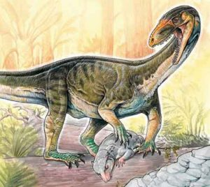"""An artist's rendering of the new species Teleocrater rhadinus hunting a cynodont, a close relative of mammals. (Gabriel Lio / Museo Argentino de Ciencias Naturales """"Bernardino Rivadavia"""")    Read more: http://www.smithsonianmag.com/science/there-were-dinosaurs-there-was-weird-crocodile-looking-thing-180962865/#g8YqXD6vuS2bI6bQ.99 Give the gift of Smithsonian magazine for only $12! http://bit.ly/1cGUiGv Follow us: @SmithsonianMag on Twitter"""