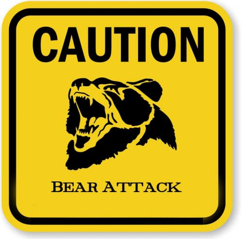 Moose Hunter Attacked, Injured by Brown Bear on Chilkat River