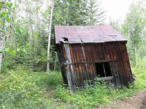 Buildings like this shed at the townsite of Fortymile in the Yukon don't last forever. Water is the chief agent of destruction. Photo by Ned Rozell.
